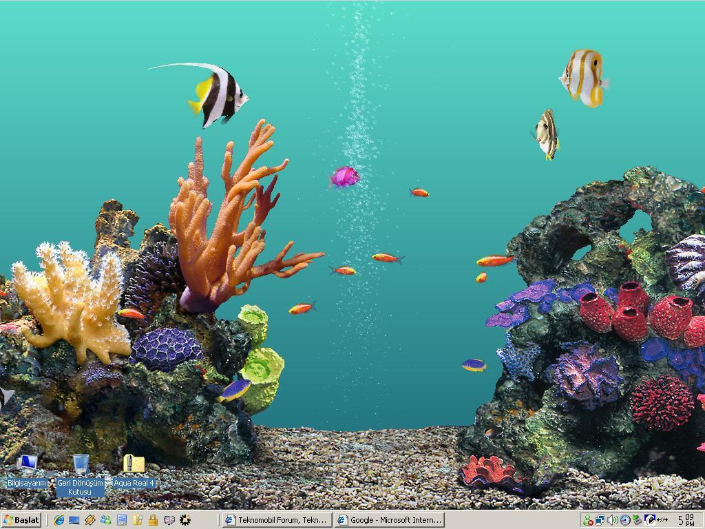 3d fish tank screensaver car interior design for Fish tank screen